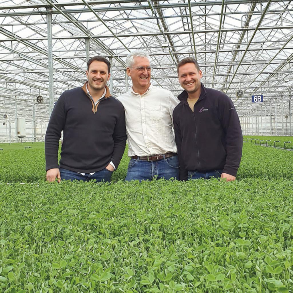 micro leaf growers